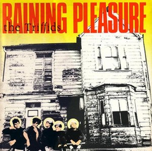 Raining Pleasure (EP) - Image: Raining Pleasure