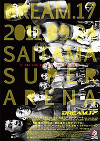 A poster or logo for Dream 17.