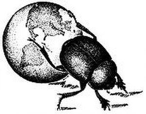 New York Entomological Society