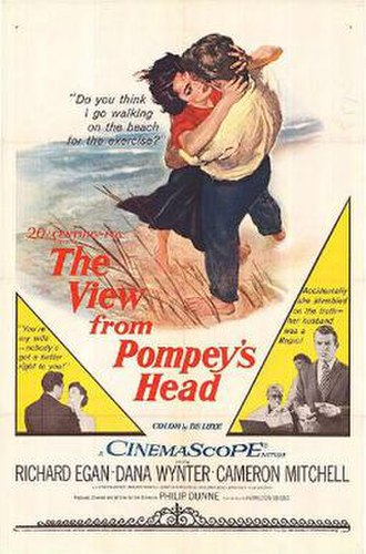 The View from Pompey's Head (film) - Theatrical release poster