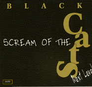 Black Cats Scream Of The Cats