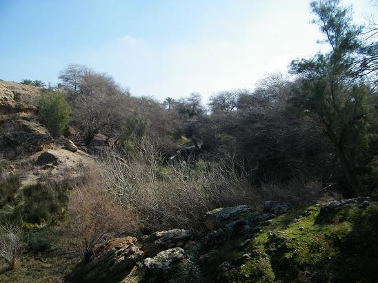 دهستان زیرراه