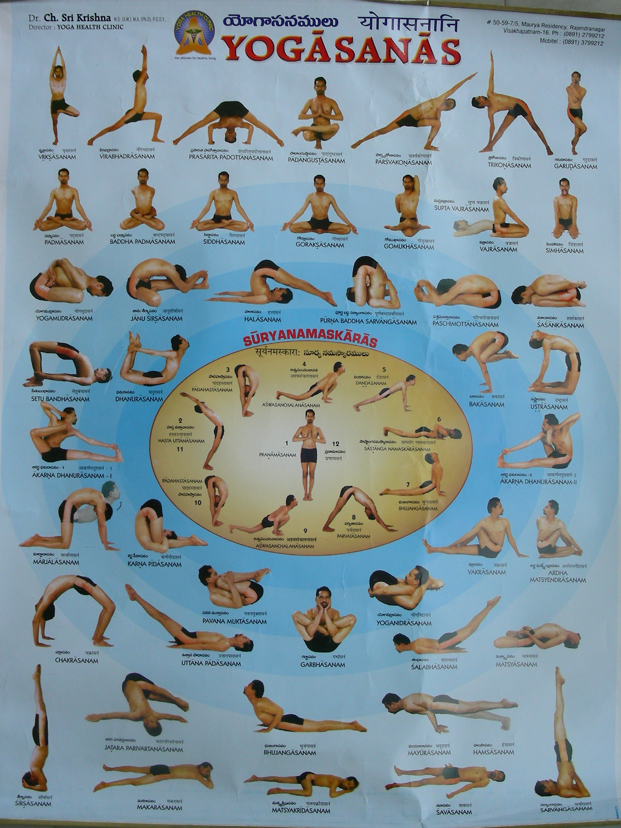509 ALL NEW YOGA ASANAS NAMES AND POSTURES