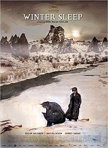 Winter Sleep (Poster).jpg