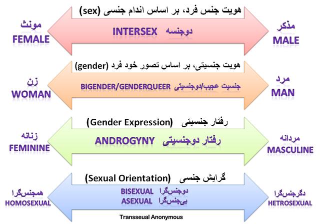 رفتارهای جنسیتی