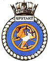 UPSTART badge-1-.jpg