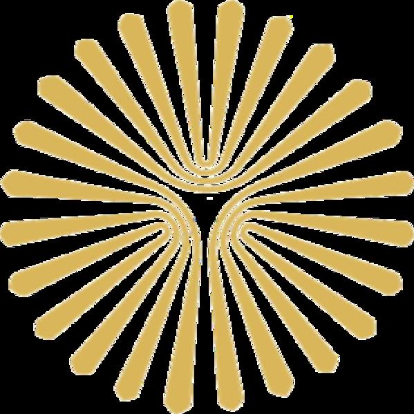599px payame noor university logo