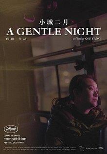 A Gentle Night poster.jpeg