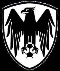لوگو باشگاه شاهین