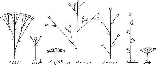 صفحه اصلی Maghsoud Group