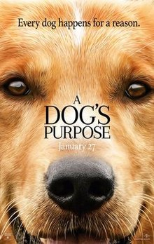 A Dog's Purpose (film).jpg
