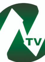 Noorin TV Network logo.png