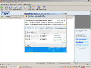 DownloadAcceleratorPlus8516.png