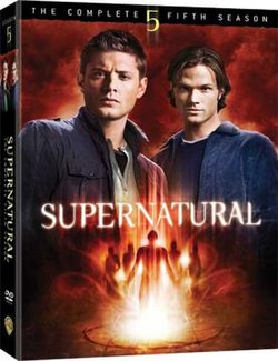 Supernatural Season 5 DVD.jpg