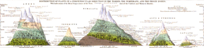 Distribution of Plants in a Perpendicular Direction in the Torrid, the Temperate, and the Rigid Zones 1848 Alexander Keith Johnston.png