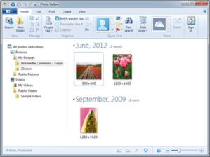 Windows Photo Gallery 2012 screenshot.png