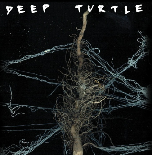 Deep Turtle Turkele