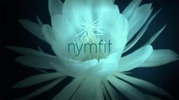 Nymfit (Televisiosarja)