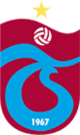 Medical Park Trabzonspor logo