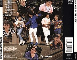 New Kids on the Block back cover.jpg