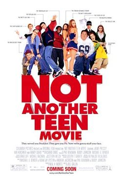 Not another teen movie.jpg