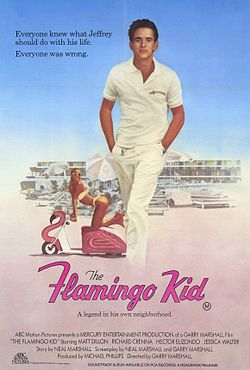 The-flamingo-kid-movie-poster.jpg