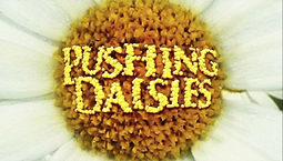 Pushing Daisies intertitle 2.jpg