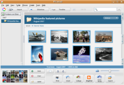 Picasa 2.2.2820-5 for Ubuntu screenshot.png