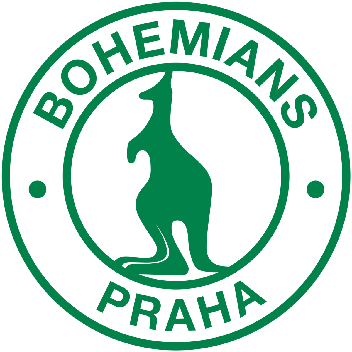 Image Result For Liberec Bohemians