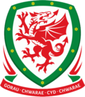 Football Association of Wales.png