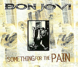 "Singlen ""Something for the Pain"" kansikuva"