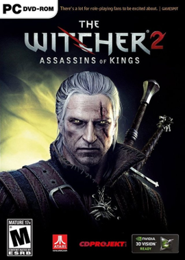 The-witcher-2-kansi.png