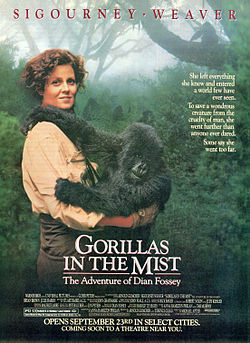 Gorillas in the mist ver3.jpg