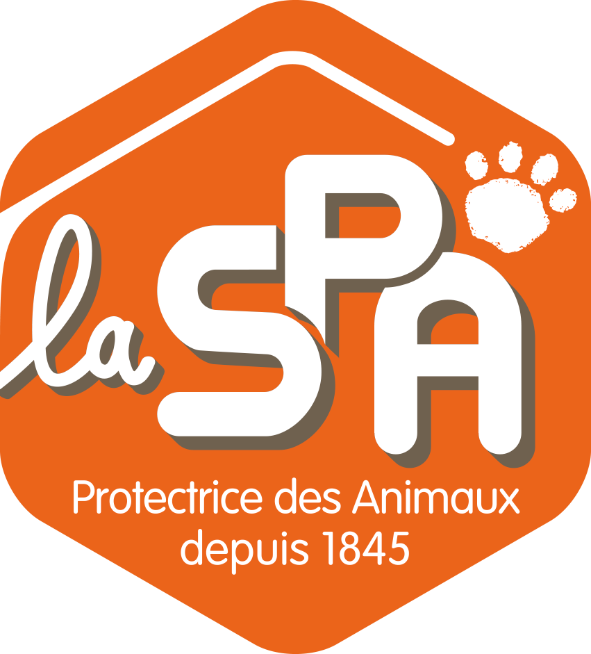 Spa animaux