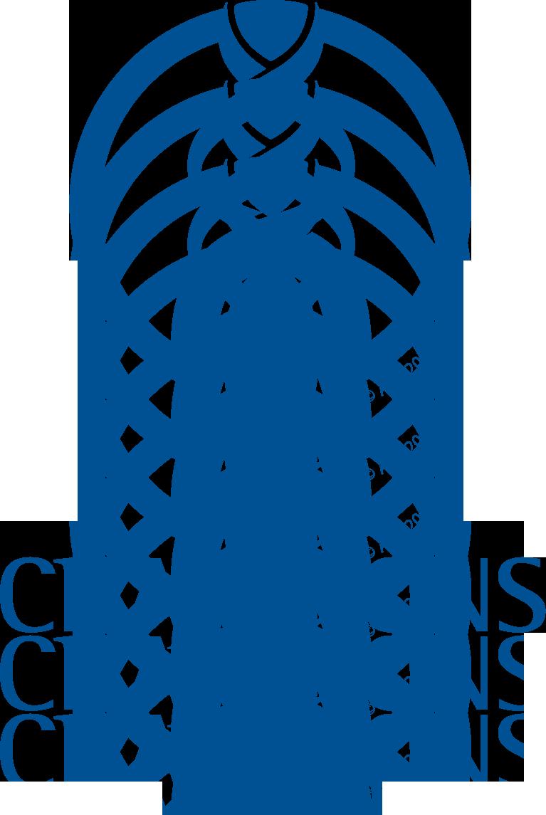 Fichier:LIGUE DES CHAMPIONS de l'AFC 2008.png - Wikipédia