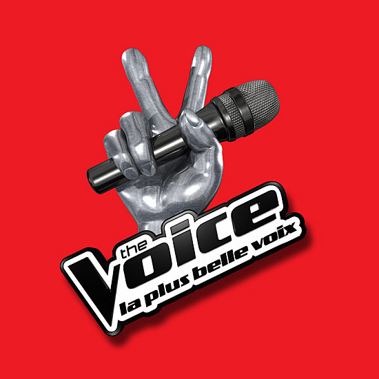 image logo the voice