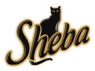 Sheba Cat Food Recall