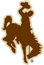 Image Result For Wyoming Bucking Horse