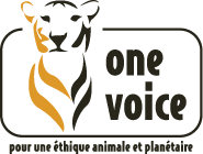 One Voice Wikip 233 Dia