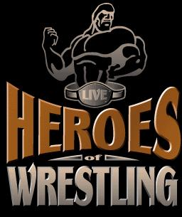 Image result for heroes of wrestling