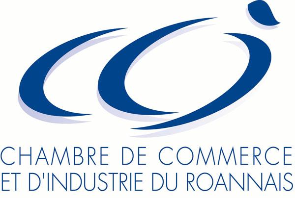 Chambre de commerce et d 39 industrie de roanne loire nord - Chambre de commerce et d industrie lyon ...