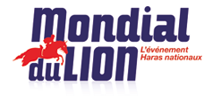 Image result for mondial du lion