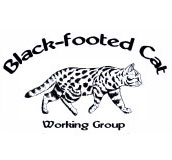 Logo du Black-footed Cat Working Group.