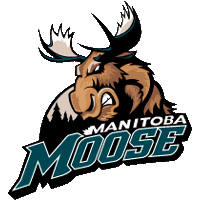 Description de l'image  Manitoba moose.png.