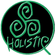 logo de Holistic Design