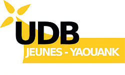 Image illustrative de l'article UDB Jeunes