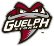 Description de l'image Guelph Storm 2018.png.