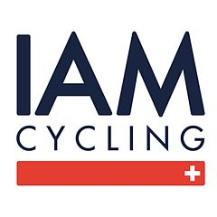 Logo IAM 2014.jpg
