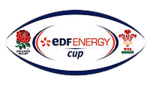 Description de l'image Edf Energy Cup logo.png.