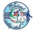 Logo du Chieri Volley